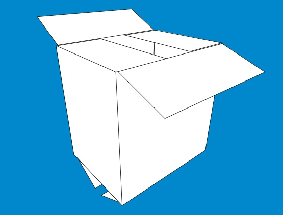 Standard Box (RSC Regular Slotted Container)
